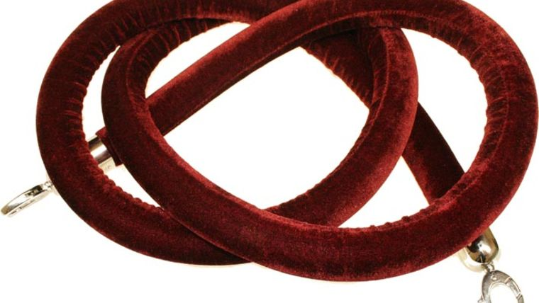 Picture of a Crowd Control Stanchion Rope