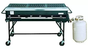 Image of a BBQ Grill, 6-Burner with Stand