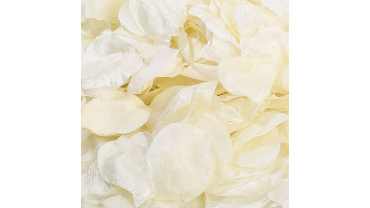 Picture of a Scatter Moderate Coverage Silk Petals to Wedding Aisle