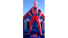 Image of a Spiderman jumper-3D