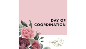 Image of a Day of Coordination