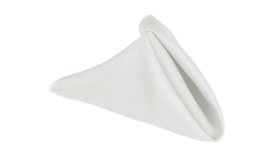 Image of a 20 x 20 in White Napkins