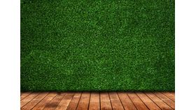 Image of a Grass Walls (10' x 4')