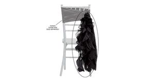 Image of a Black Curly Willow Ribbons & Sashes