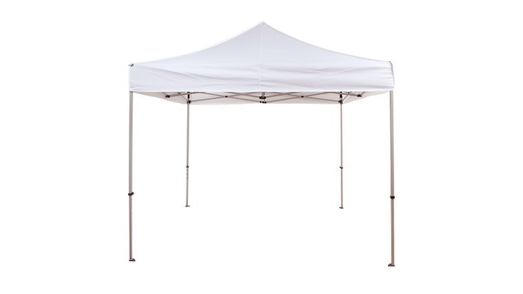 Picture of a 10 x 10 Canopy/ Tent