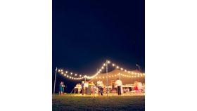 Bistro Lights image