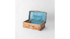 Jones Suitcase image