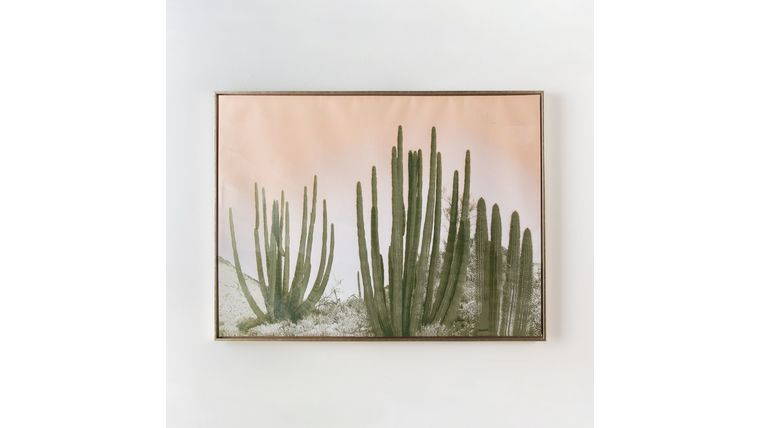 Picture of a Brass Framed Cactus Painting