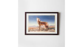 Image of a Framed Coyote Print