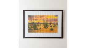 Image of a Framed Ocotillo Print
