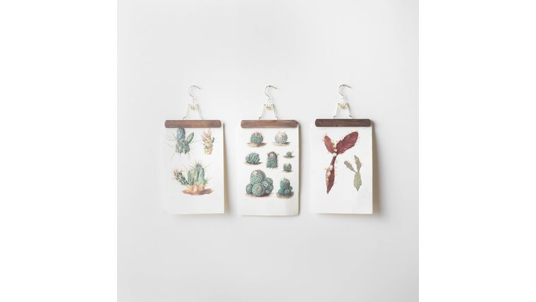 Picture of a Botanical Cactus Wall Hangings