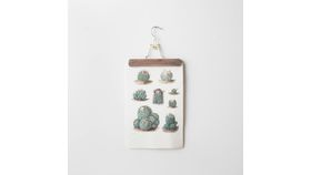 Botanical Cactus Wall Hangings image