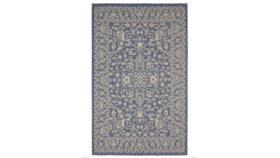 Image of a Blue Outdoor Rug