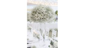 Image of a Babies's Breath flowers centerpieces