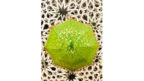 Image of a GOLD/LIME GREEN UMBRELLA