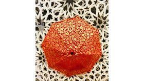 Image of a GOLD/RED UMBRELLA
