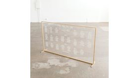Image of a Acrylic and Metal Frame