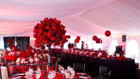 Image of a 30x100 Tent Liner Tent Decoration
