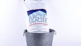 Image of a 12 Kg Bag of Ice
