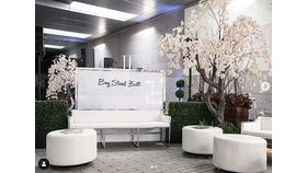 10'ft Blush Cherry Blossom Tree image