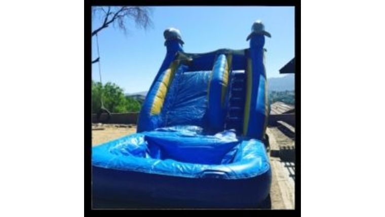 Picture of a 14' Dolphin Water Slide