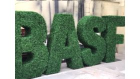 Image of a Hedge Letter S