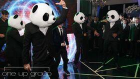 Image of a Panda Squad