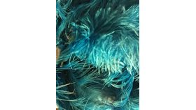 Image of a Aqua Ostrich Feathers