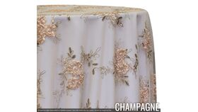 "Image of a 120"" Overlay - Ribbon Mesh - Champagne"