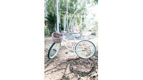 Image of a Madeleine Bicycle with Woven Basket