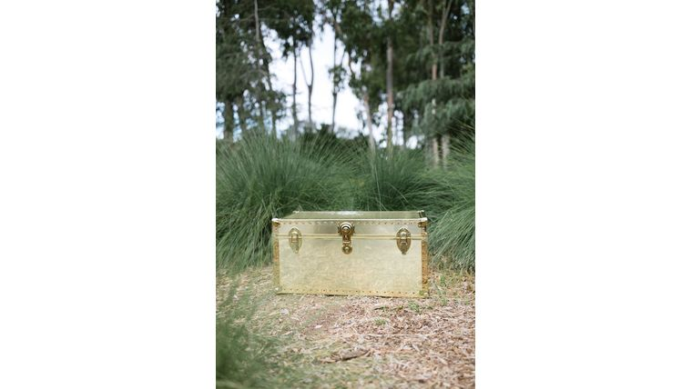 Picture of a Josephine Gold Trunk