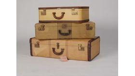 EMS Petite Suitcase image