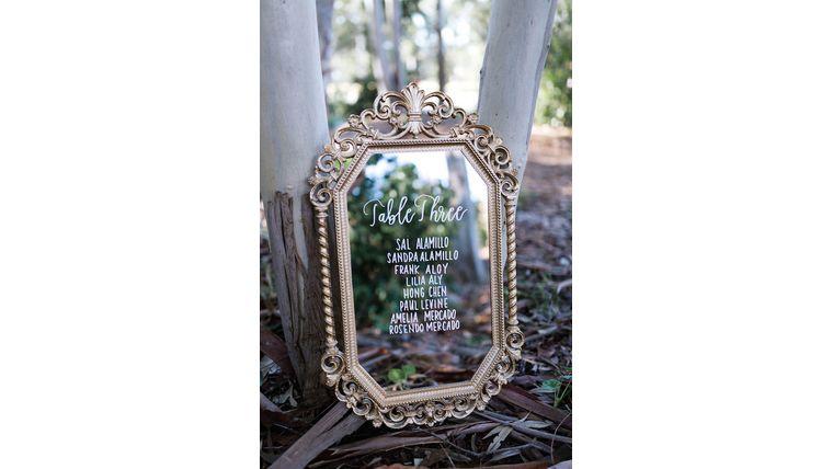 Picture of a Alessandra Baroque Mirror