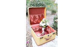 Jacinda Vintage Square Suitcase image