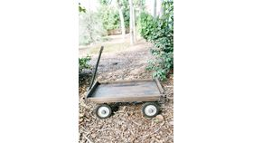 Image of a Antonia Small Wood Wagon