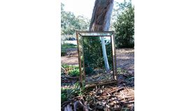 Image of a Marie Vintage Rectangular Mirror