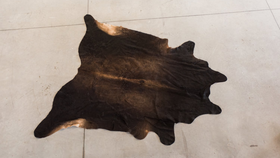 Image of a Black Cowhide