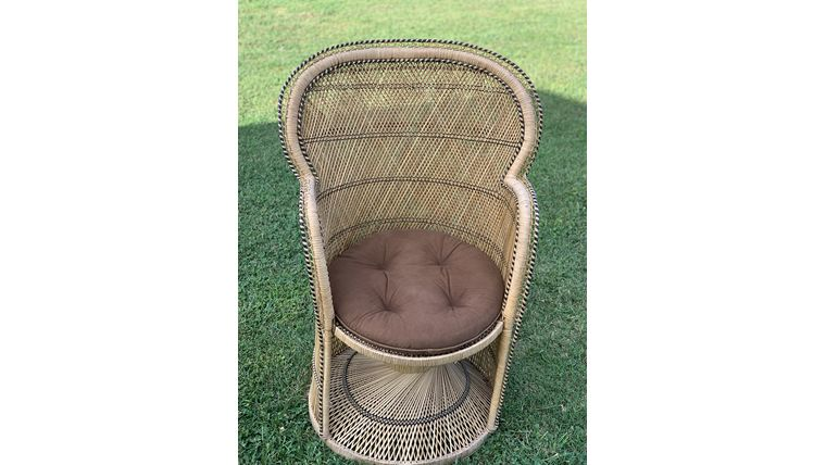 Picture of a Peacock Chair