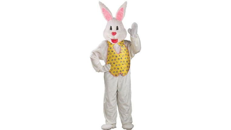 Picture of a Easter Bunny Costume