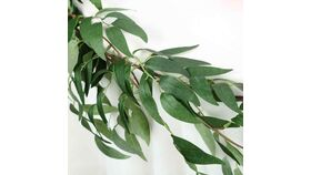 Image of a 5 FT | Real Touch Willow Green Leaves Artificial Garland Vines