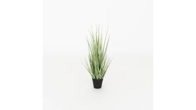 """Image of a 21"""" Potted Grass"""