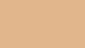 Image of a #26 Pongee Seamless
