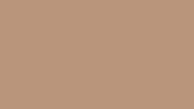 Image of a #25 Beige Seamless