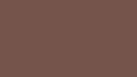 Image of a #20 Coco Brown Seamless