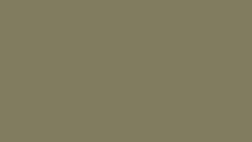 Image of a #10 Leaf Seamless
