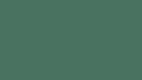 Image of a #12 Deep Green Seamless
