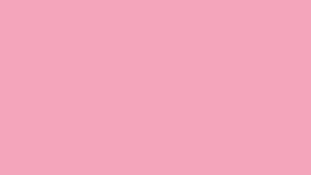 Image of a #17 Carnation Pink Seamless