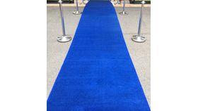 Image of a 25' Blue Carpet Runner