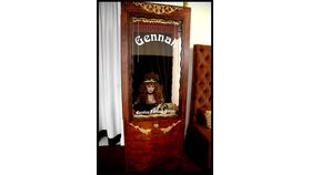 Fortune Teller Booth image
