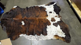 Image of a Assorted Cow Hides
